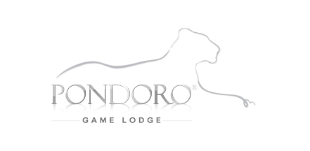 Pondoro Safari Lodge